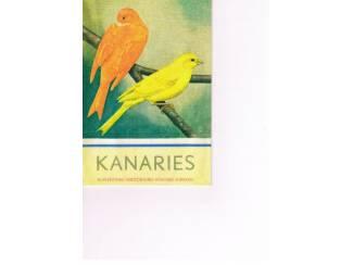 Kanaries