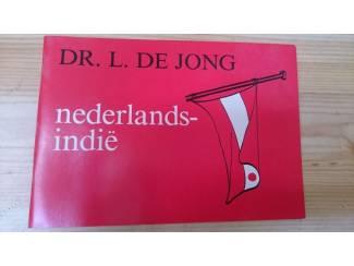 Nederlands indie