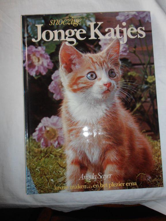 Snoezige jonge katjes – Angela Sayer