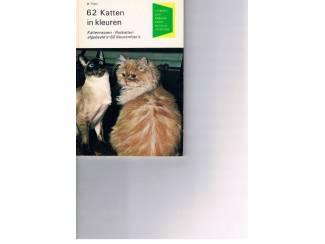 62 Katten in kleuren – D. Thies