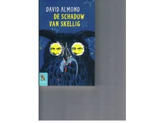 De schaduw van Skellig – David Almond