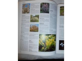 Flora en Fauna Herwig – Tuinplanten encyclopedie