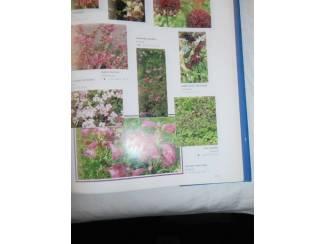 Flora en Fauna Tuinplanten encyclopedie op kleur
