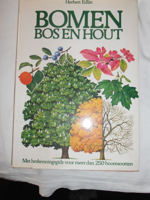 Bomen Bos en Hout – Herbert Edlin