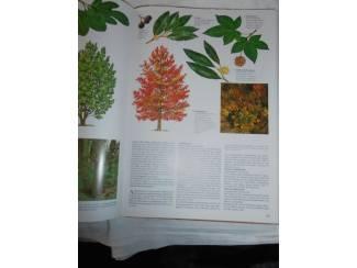Flora en Fauna Bomen Bos en Hout – Herbert Edlin