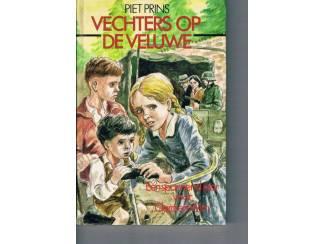 Jeugdboeken Vechters op de Veluwe – Piet Prins