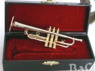 Miniatuur trompet zilver met koffer