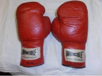Bokshandschoenen Invincible 12 OZ